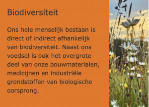 Biodiversiteit_ECO+BOUW